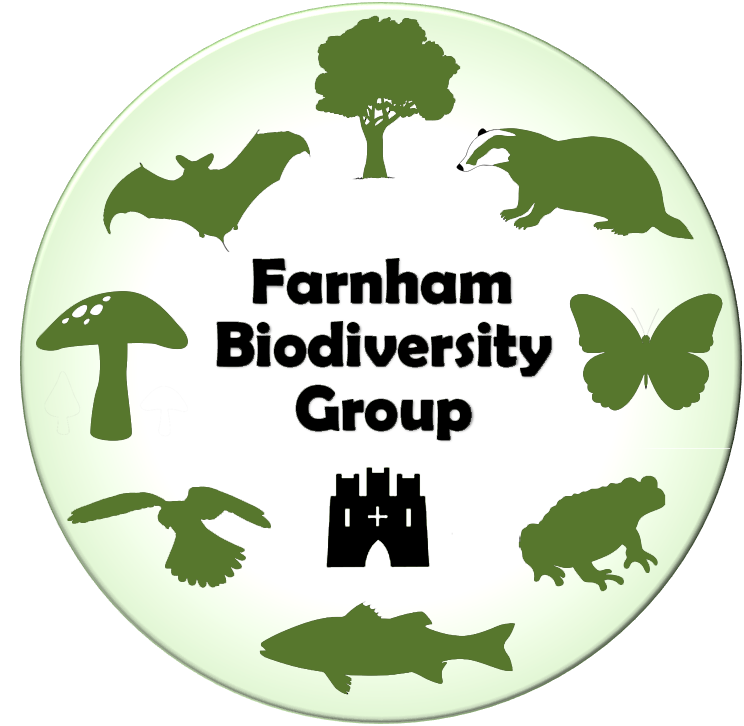 © Farnham Biodiversity Group 2019