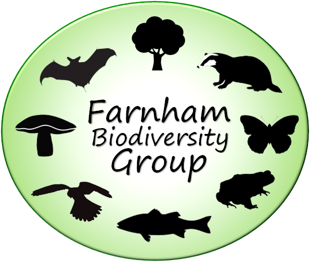 © Farnham Biodiversity Group 2019
